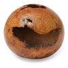 Red Oak Burl Hollow Form Vessel