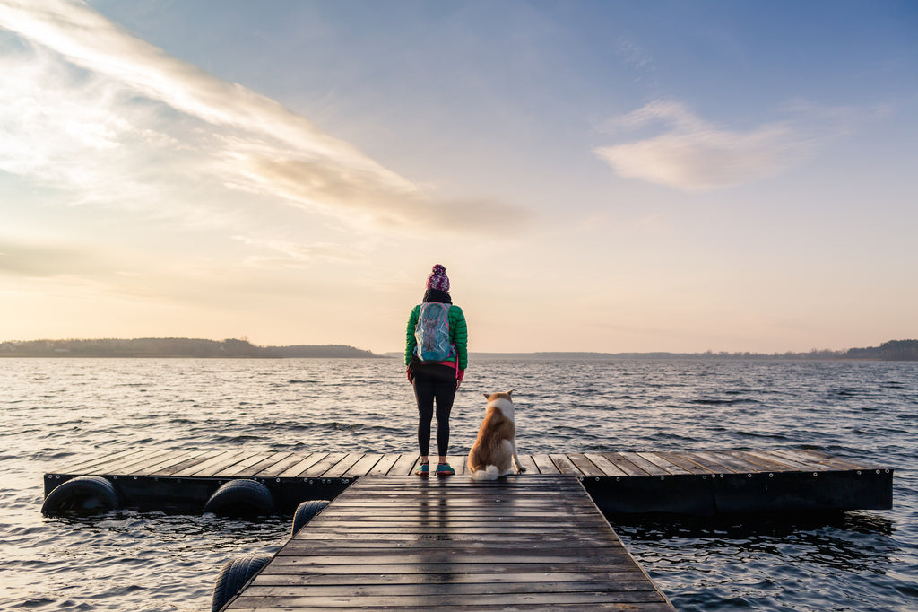 Dog and owner looking off a pier onto water