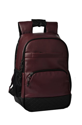 F Gear Luxur Anti Theft 25 Liters Laptop Backpack (Brown)