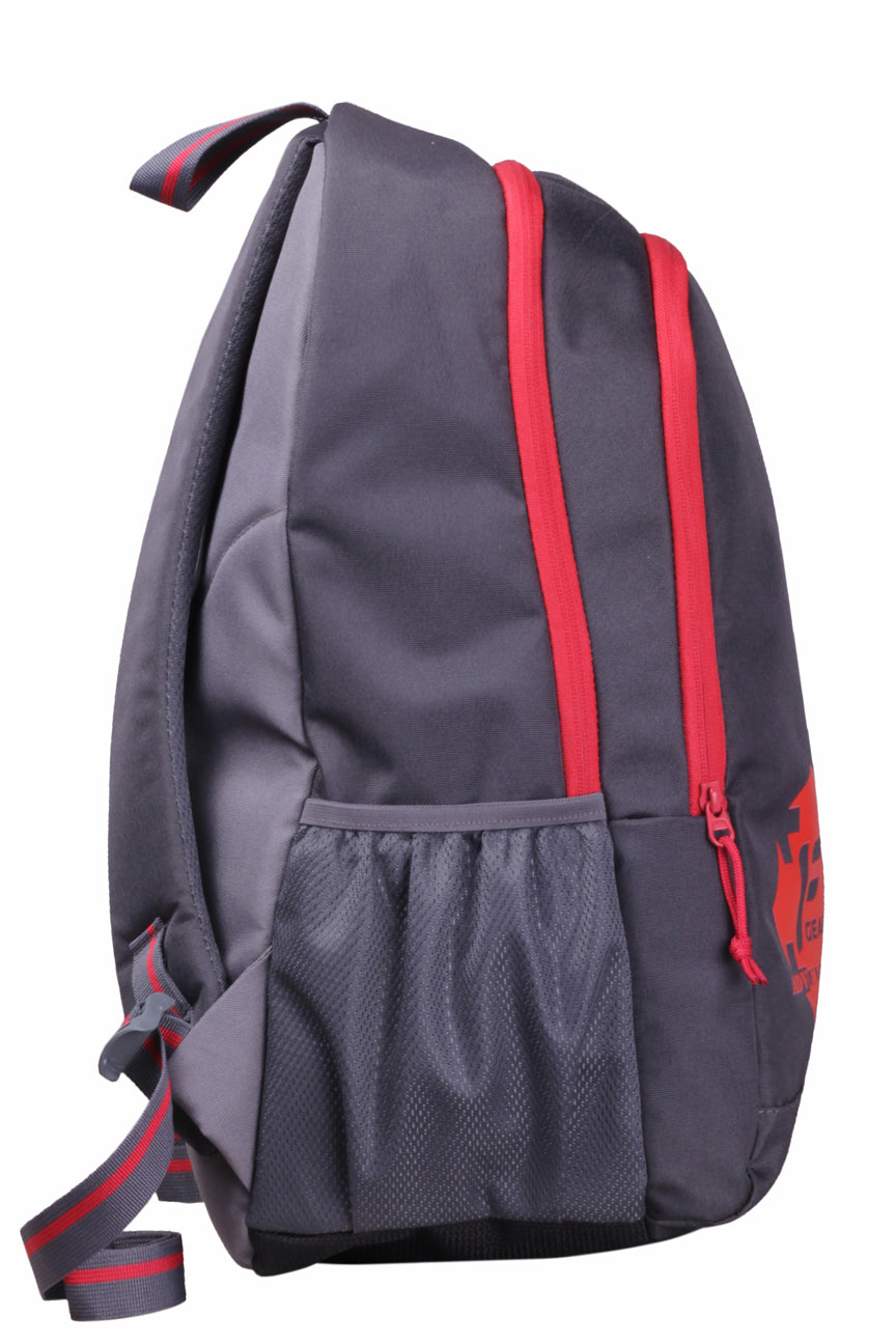 F Gear Castle GR 24 Ltrs Red Casual Laptop Backpack (2263)