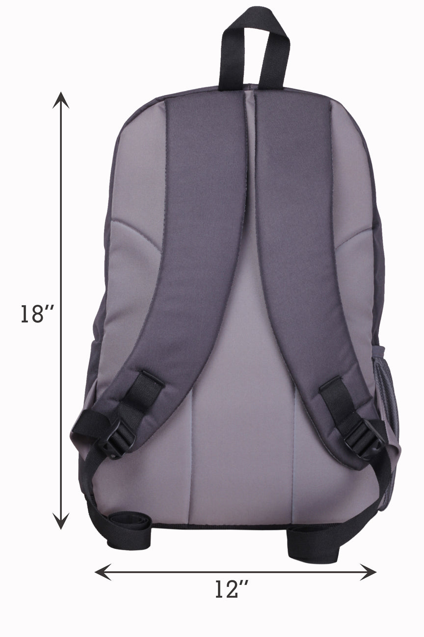 F Gear Castle VVV 22 Ltrs Grey Casual Laptop Backpack (2336)