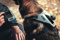 Dog & Police Communication System