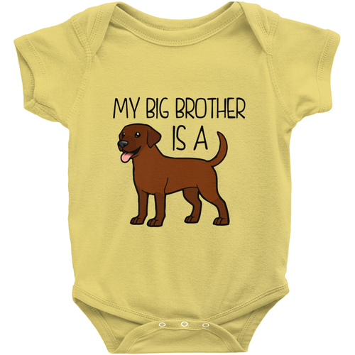 My Big Brother is a Labrador (Chocolate) Infant Onesie