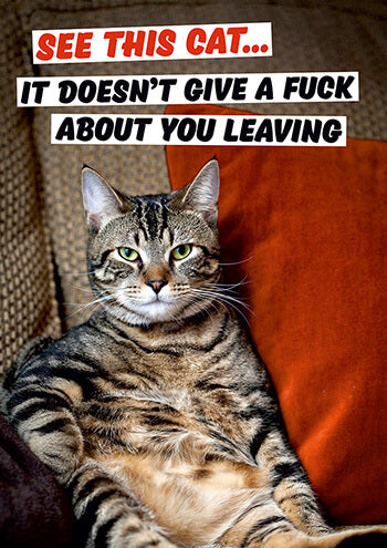 See This Cat... Leaving Card