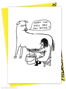 David Shrigley What The Hell Card