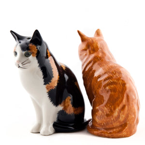 Eleanor and Vincent Salt and Pepper Pots