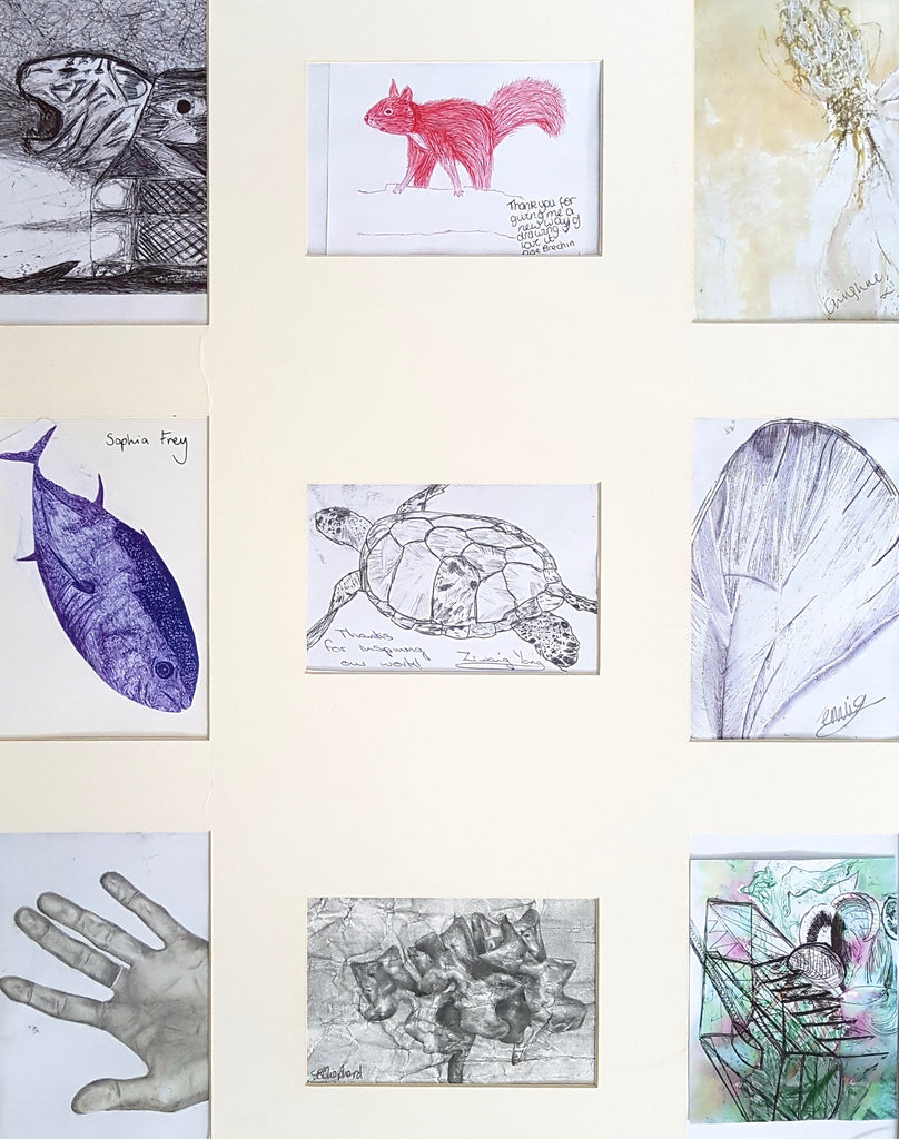Royal Grammar School Newcastle collection of students Biro drawings of animals inspired by Artist Jane Lee McCracken