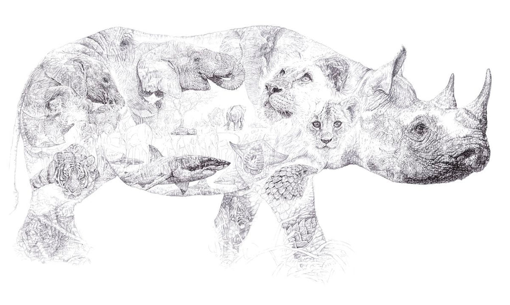 Rhino 2014 Biro drawing