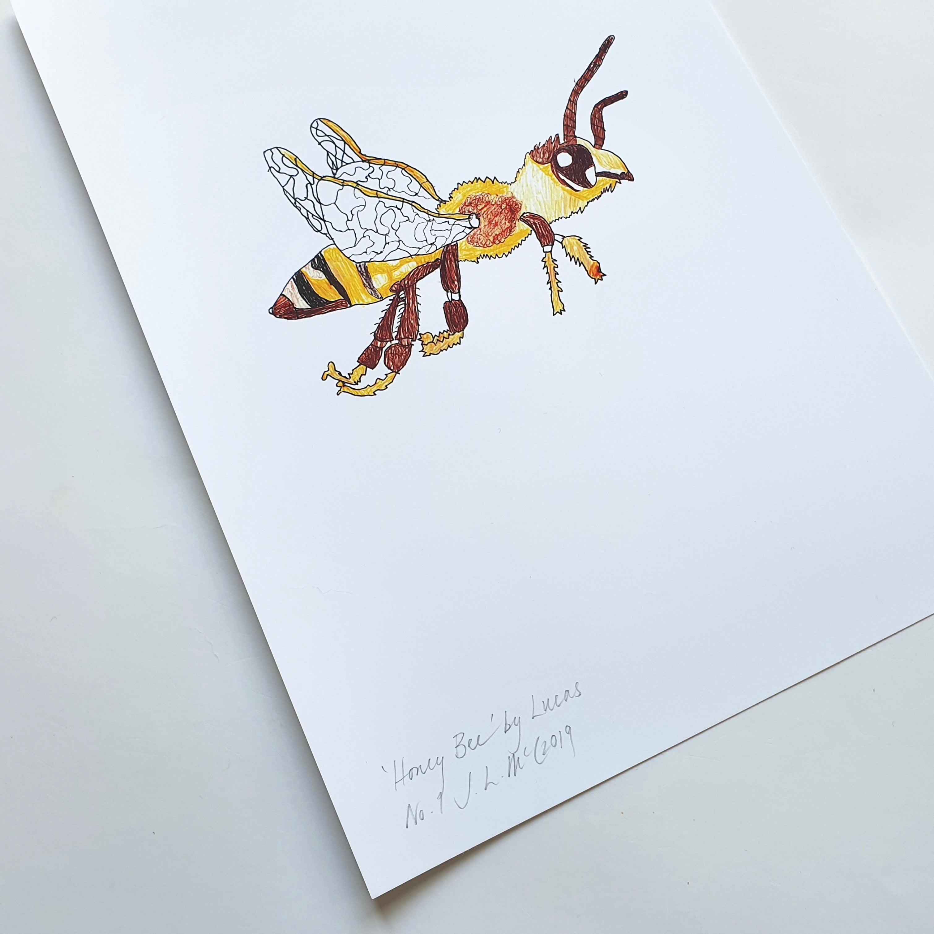 Bee by Lucas Exhibition Print