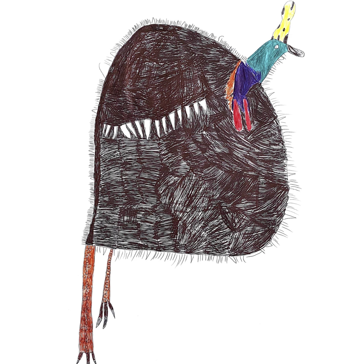 Cassowary by Sally Exhibition Print