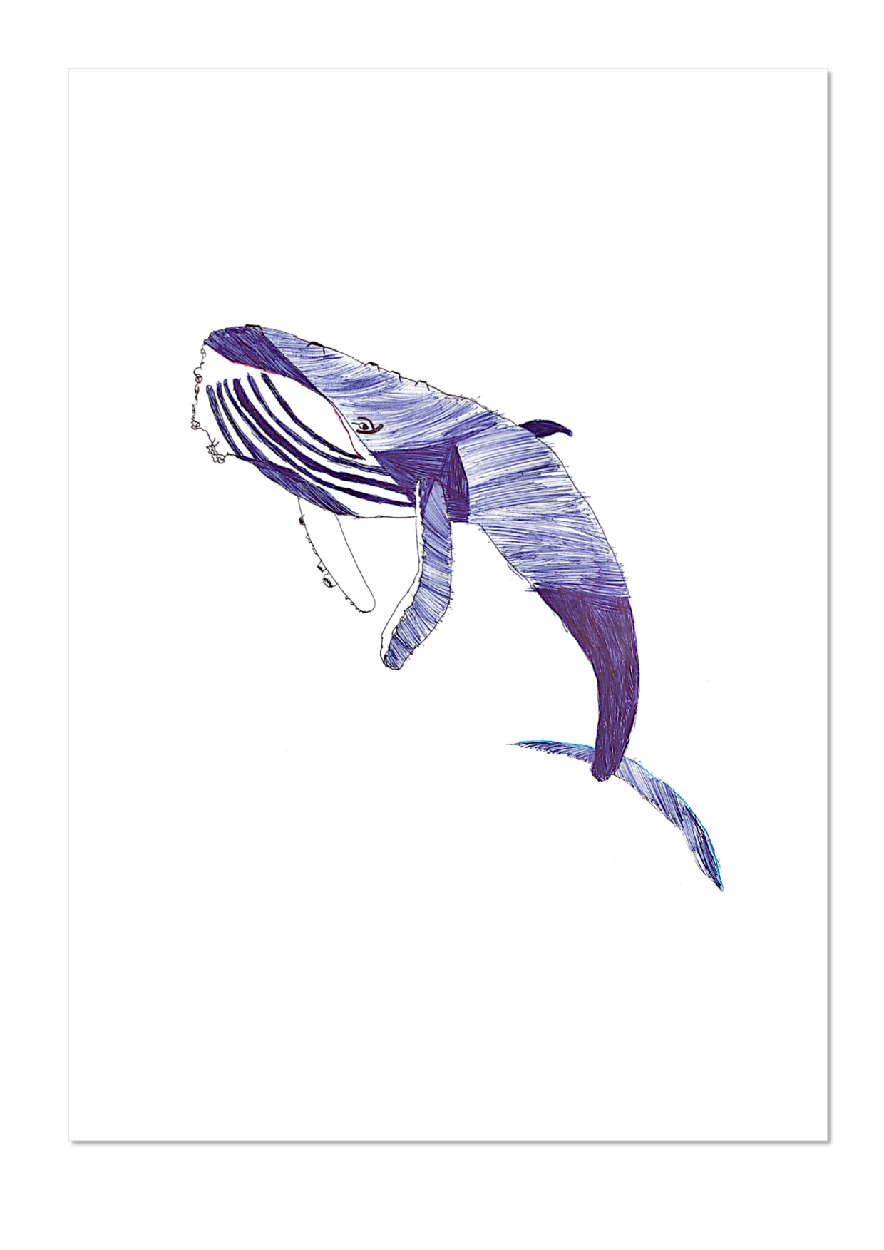 Whale by Jodie Exhibition Print