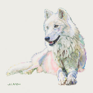 Atka Limited Edition Print