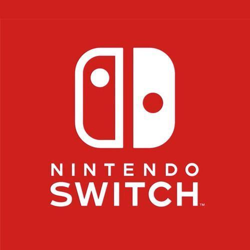 Nintendo Switch Cables & Spares