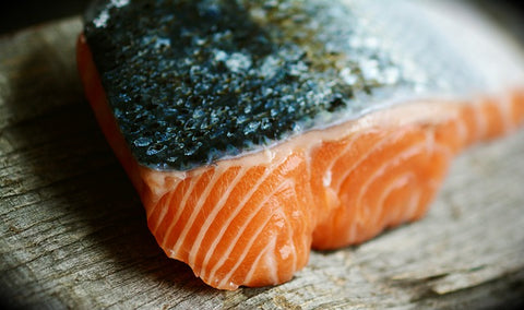 cooked salmon as a dog diet