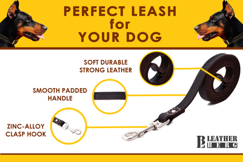 6ft Leather Dog Leash