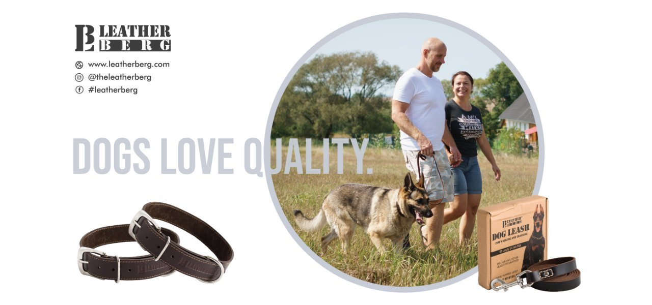 dogs love quality and leatherberg