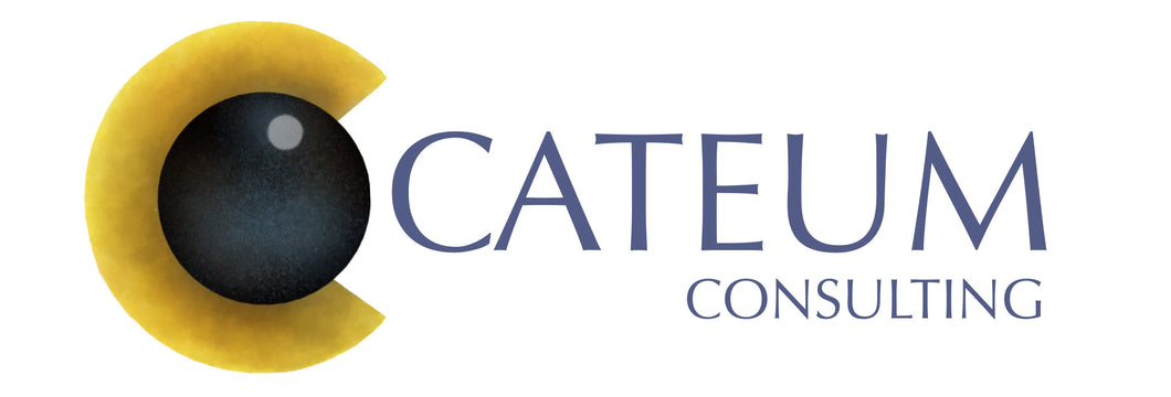CATEUM CONSULTING AB