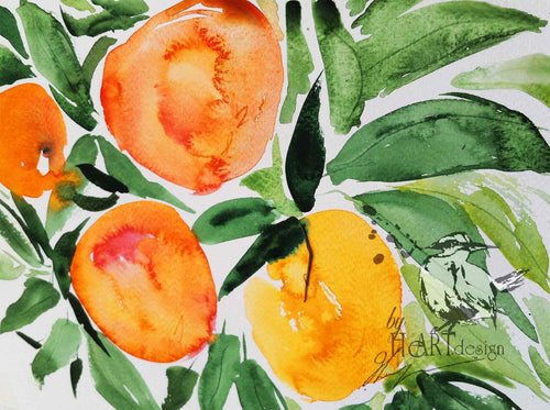 ART FRUITS, THE ORANGE TREE