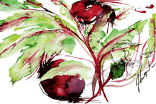ART FRUITS, THE RED BEET