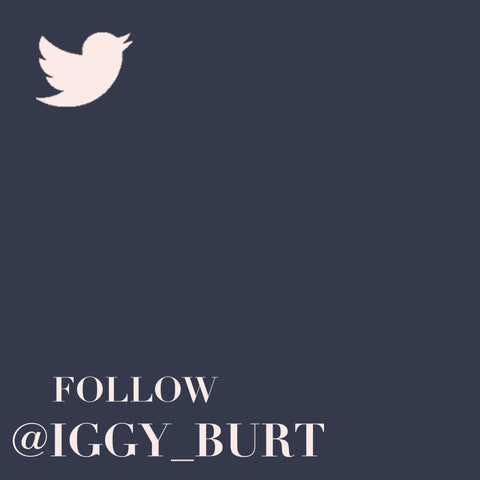 Follow Iggy & Burt on Twitter @iggy_burt