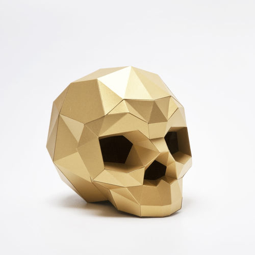 Paper Sapiens Kit in Satin Gold