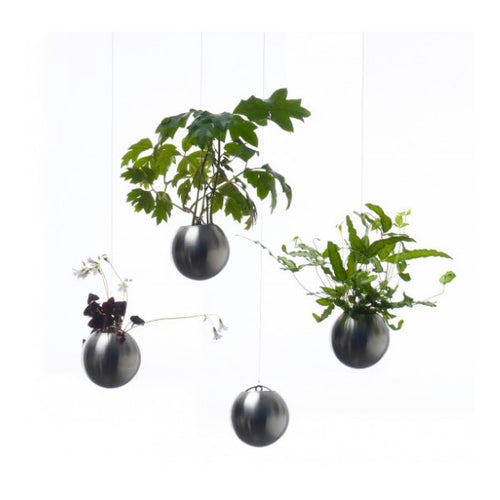 Inox Planter (2 sizes)