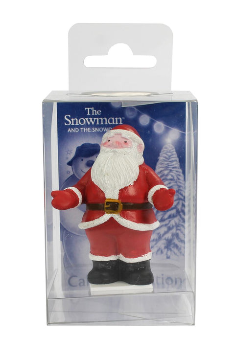 Santa Figure Cake Decoration