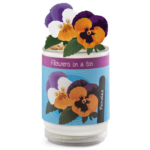 Flowers In A Tin