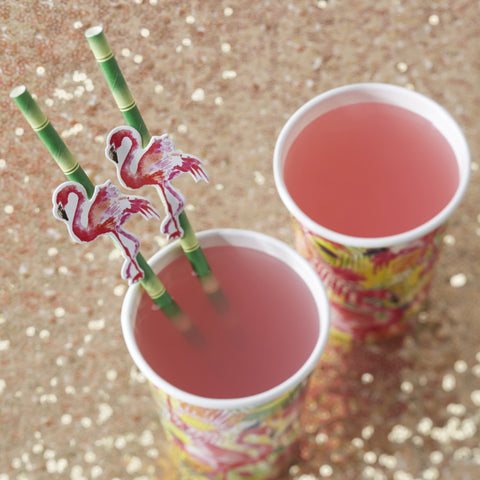 Flamingo Paper Bamboo Straws  - Flamingo Fun