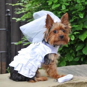 Doggie Design Pets Dog Wedding Harness Dress/Bridal Set by Doggie Design