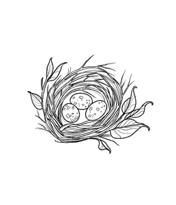 Nest WIth Eggs by Jasper