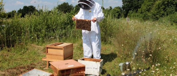 Cambridgeshire Beekeepers Association