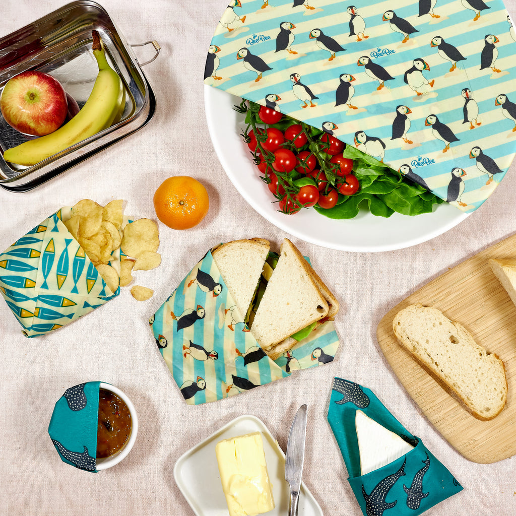 Food wrapped in ocean collection family pack beeswax wraps