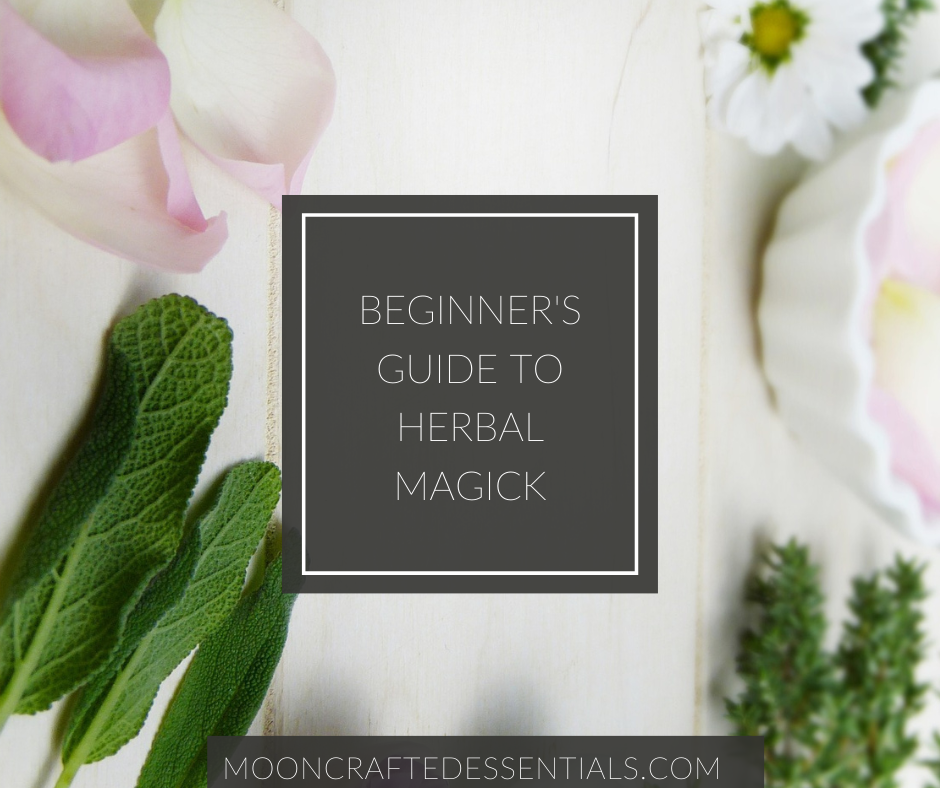 Beginner's Guide to Herbal Magick