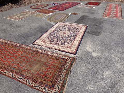 Oriental Rugs Drying
