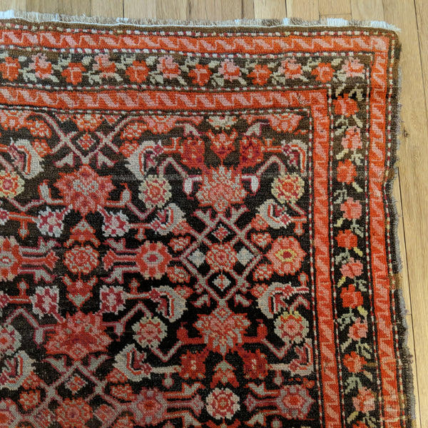 Antique Rug, 3' 8 x 5' 5 Brown Caucasian - Jessie's Oriental Rugs