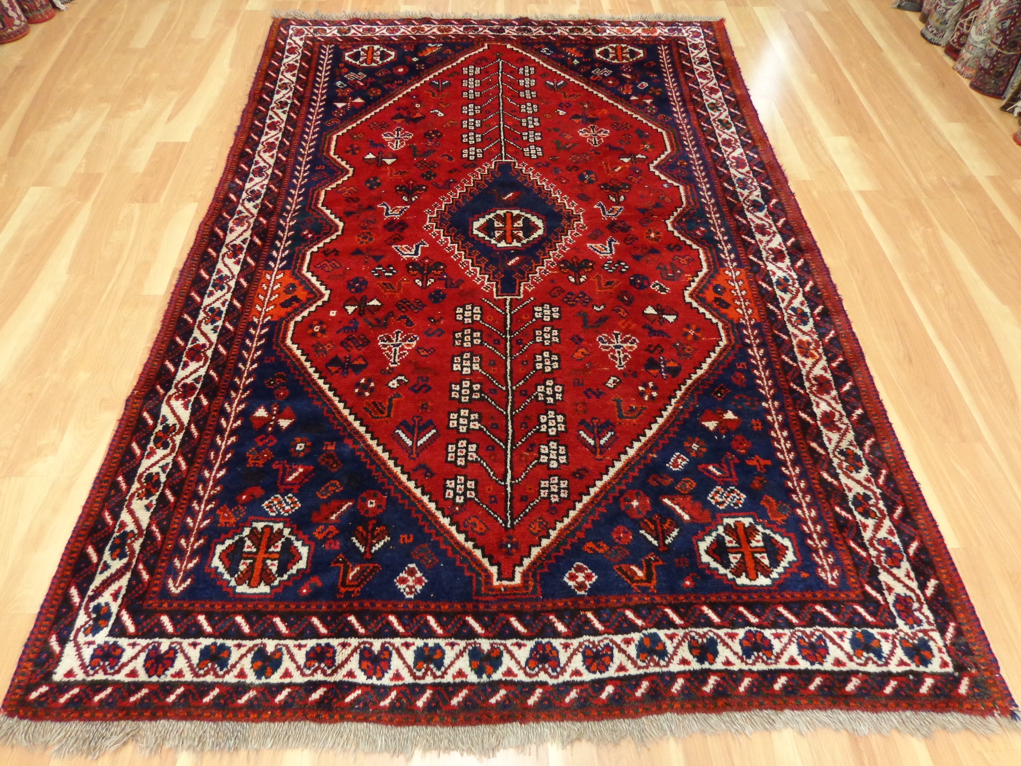 Persian Rug 5' 9 x 8' 8 Red Shiraz - Jessie's Oriental Rugs