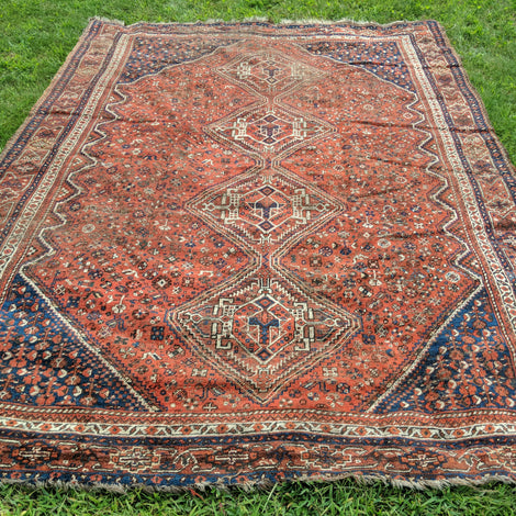 Brown Oriental Rugs