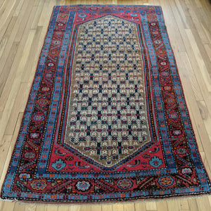 Persian Rug, 3' 10 x 6' 10 Light Brown Hamedan - Jessie's Oriental Rugs