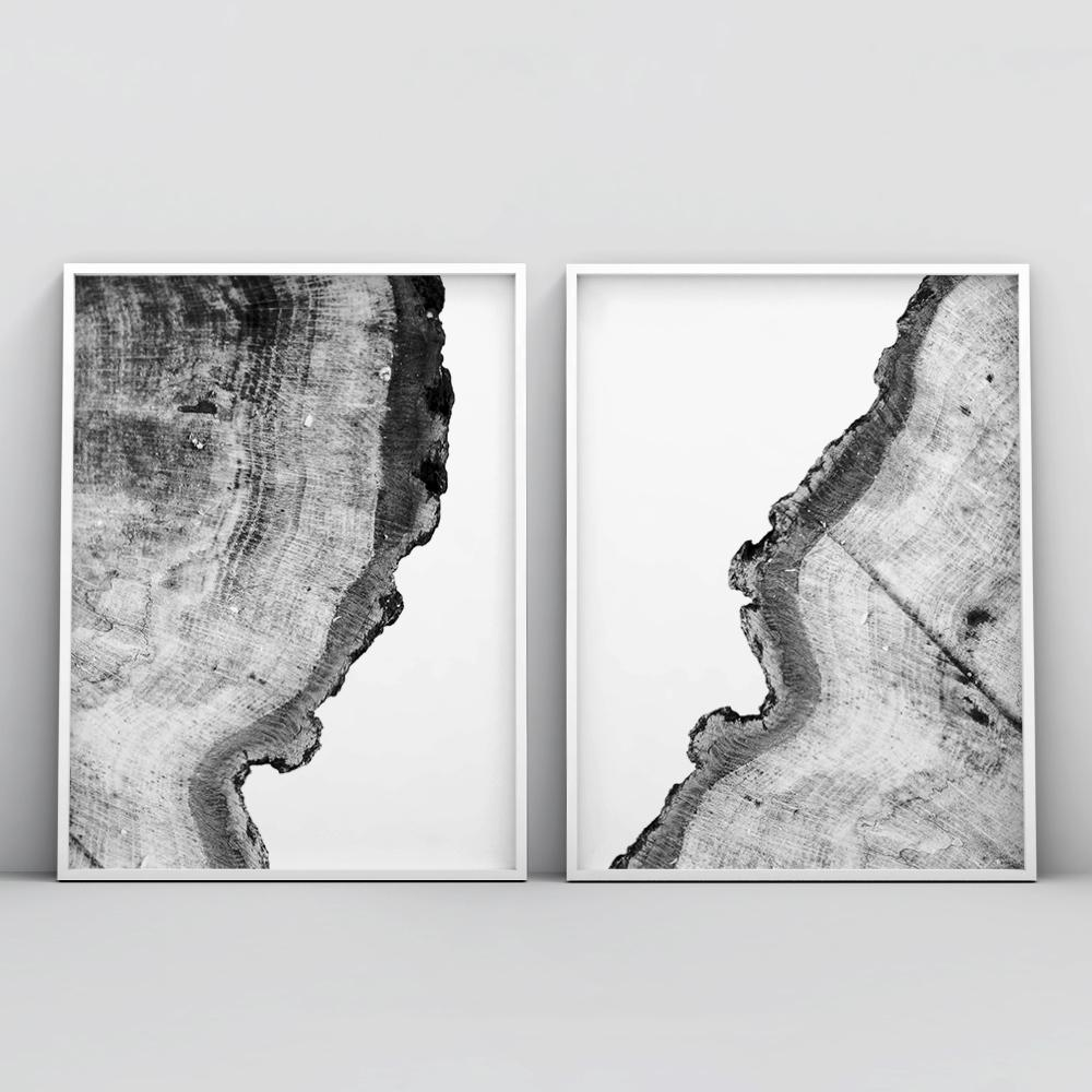 Minimalistic Tree Ring 2 Piece Poster Set Set of 2 Prints - Timiko Studio