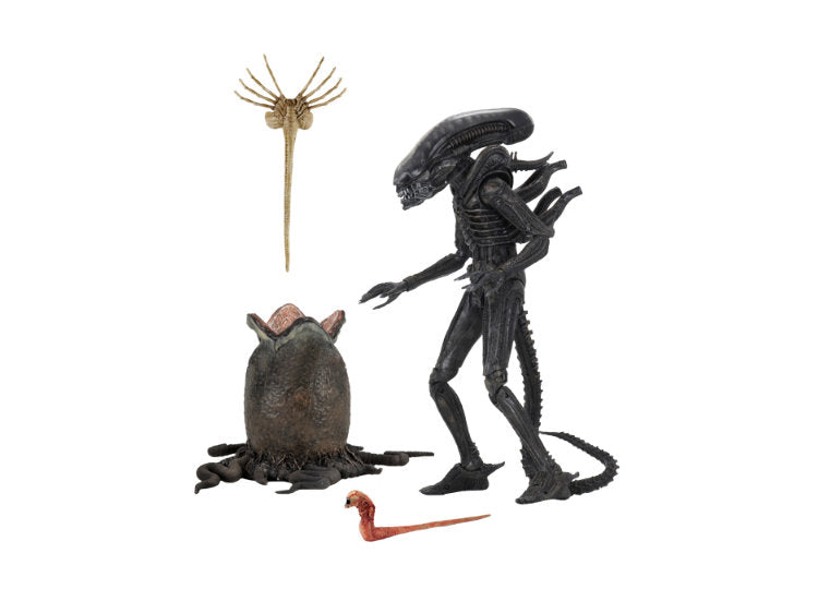 "Alien 7"" Ultimate – 40th Anniversary Big Chap"