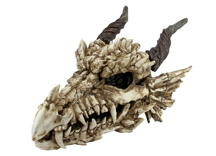 Dragon Skull (Large)