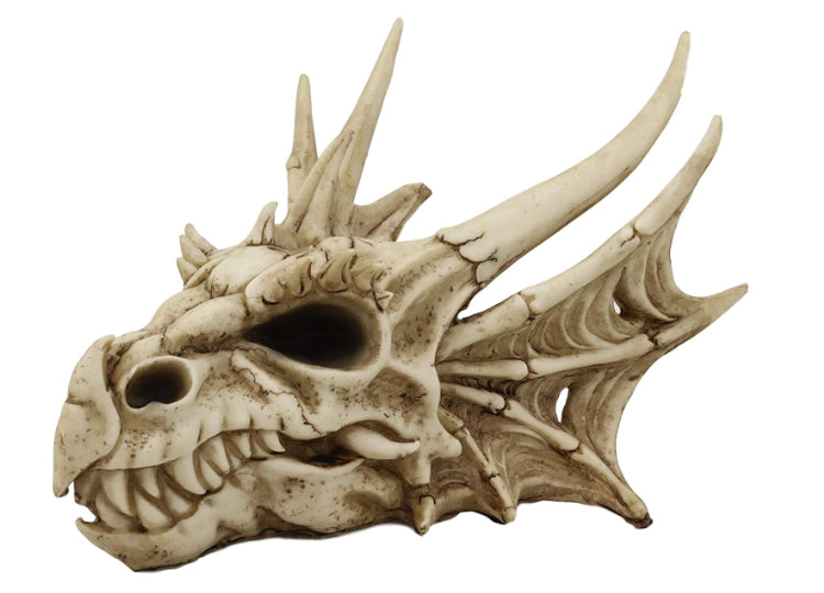 Dragon Skull (Small)