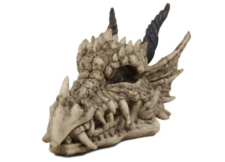 Dragon Skull (Tiny)
