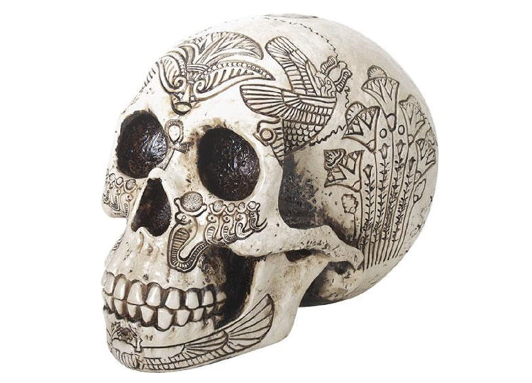 Egyptian Skull - Large
