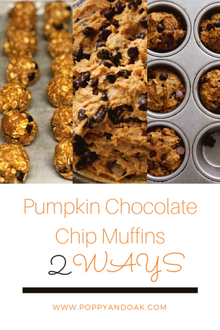 Pumpkin Chocolate Chip Muffins, Healthy No Bake Energy Bites, Fall Baking, October, November
