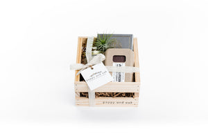 Gratitude gift box featuring soap, notepad, candle and air plant