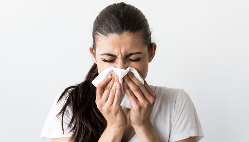 Here's How To Prevent Seasonal Allergies - Ellie Shortt