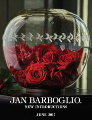 Jan Barboglio New Introductions June 2017