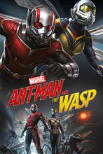 Ant-Man and The Wasp Movie Poster - egoamo.co.za